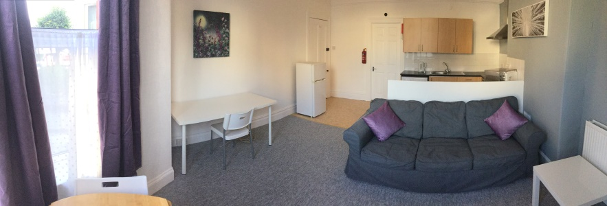 living room in this 1-bed student flat